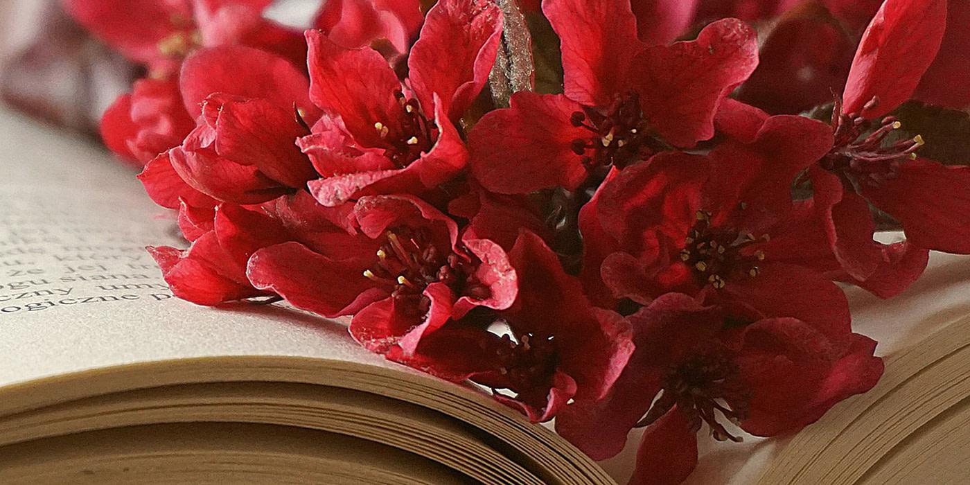 tuto-marque-page-livre-ouvert-avec-bouquet